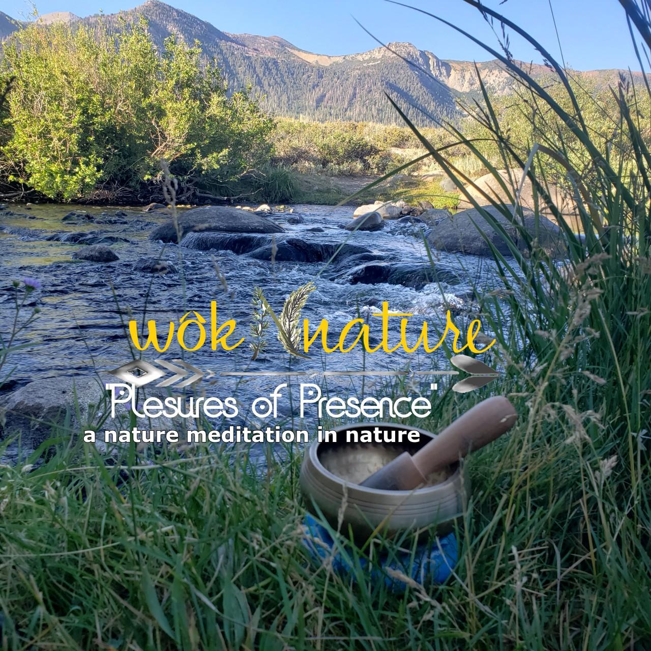 wokNnature-singing-bowl-by-water-1-POP-poster1